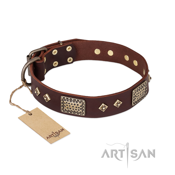 Awesome design studs on leather dog collar