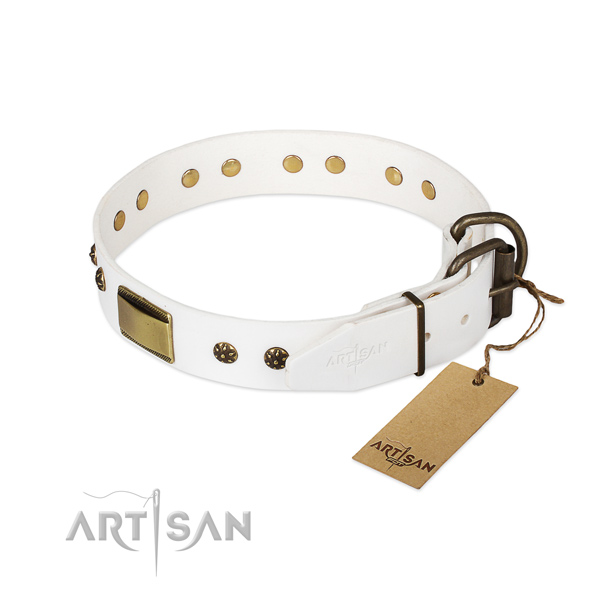 Daily use genuine leather collar with studs for your canine