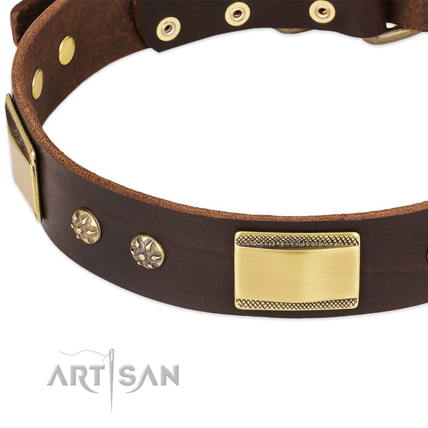 Everyday use genuine leather collar with rust-proof buckle and D-ring
