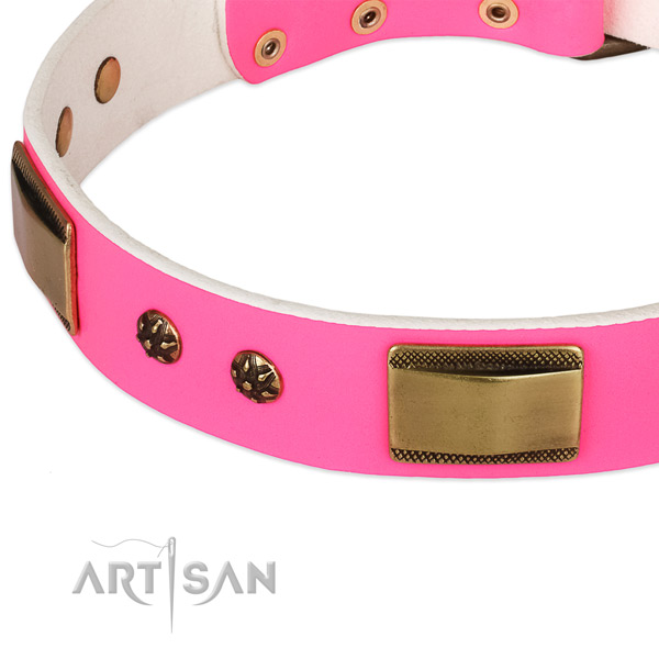Everyday walking natural genuine leather collar with strong buckle and D-ring