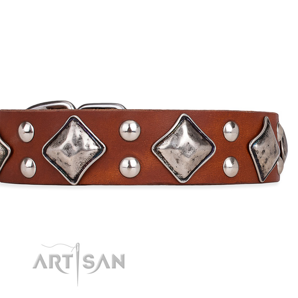 Adjustable leather dog collar with extra strong brass plated hardware