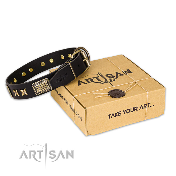 Fashionable genuine leather dog collar for stylish walking