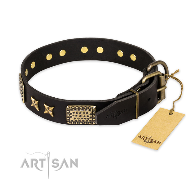 Everyday walking leather collar with decorations for your dog