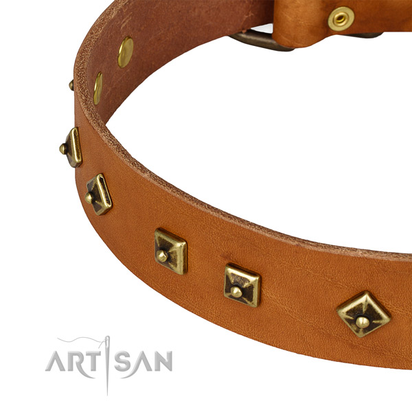 Walking genuine leather collar with rust-proof buckle and D-ring