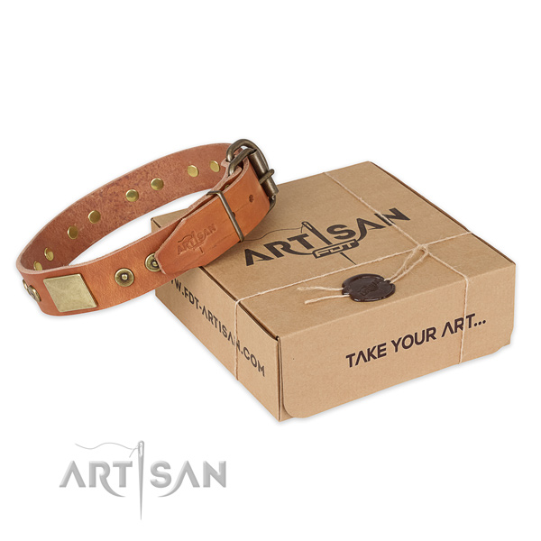 Finest quality full grain leather dog collar for walking in style