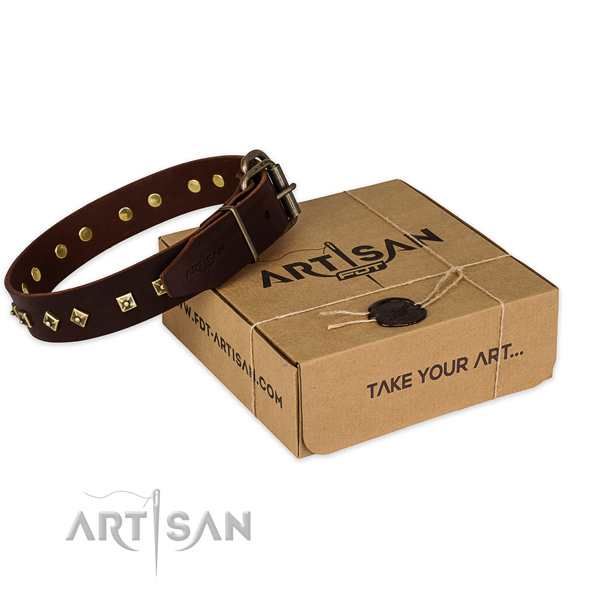 Best quality full grain natural leather dog collar for walking