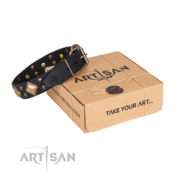 Top quality full grain natural leather dog collar for stylish walks