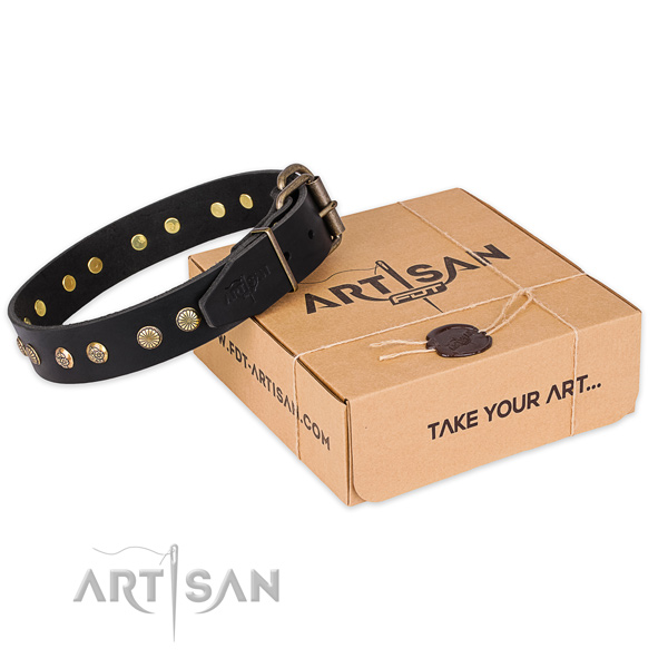 Perfect fit full grain leather dog collar for everyday walking