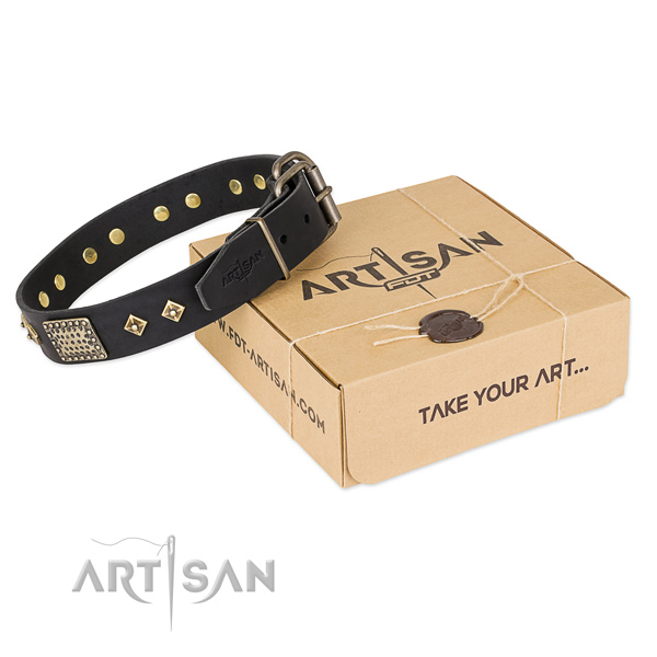 Perfect fit full grain leather dog collar for everyday use