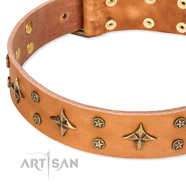 Quick to fasten leather dog collar with almost unbreakable non-rusting fittings
