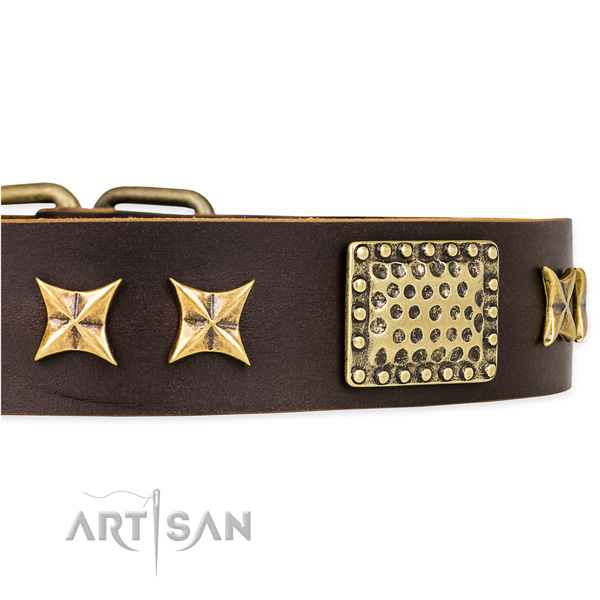 Snugly fitted leather dog collar with resistant to tear and wear brass plated buckle and D-ring