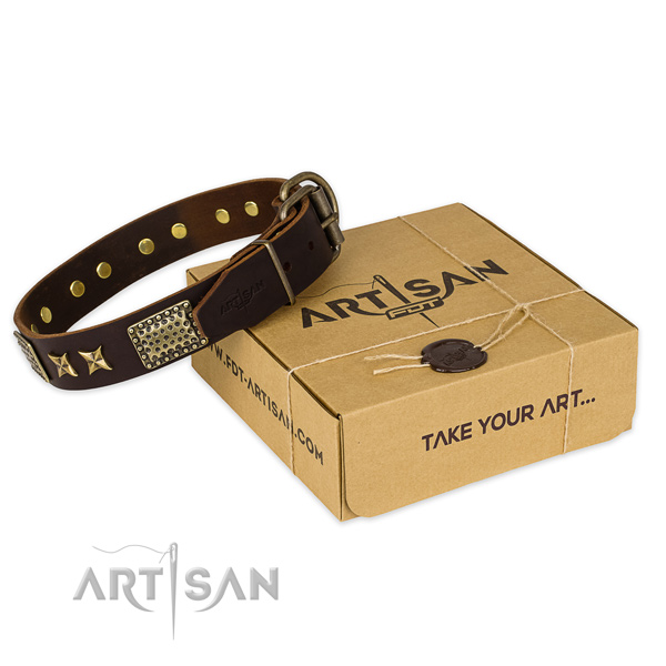 Incredible leather dog collar for walking in style
