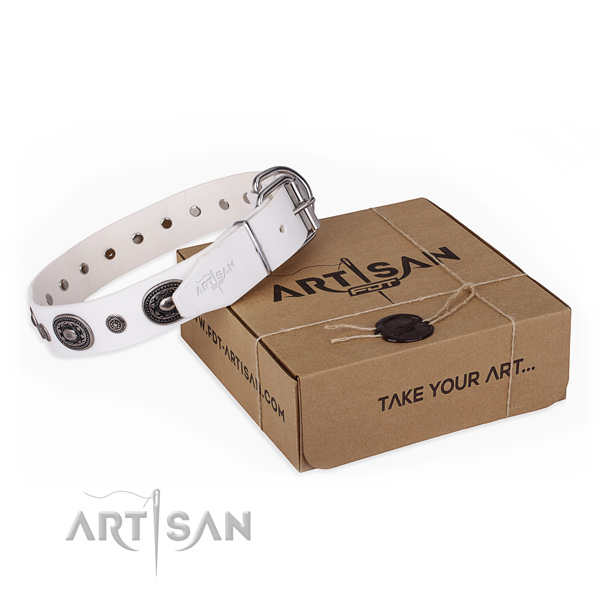 Awesome genuine leather dog collar for everyday use