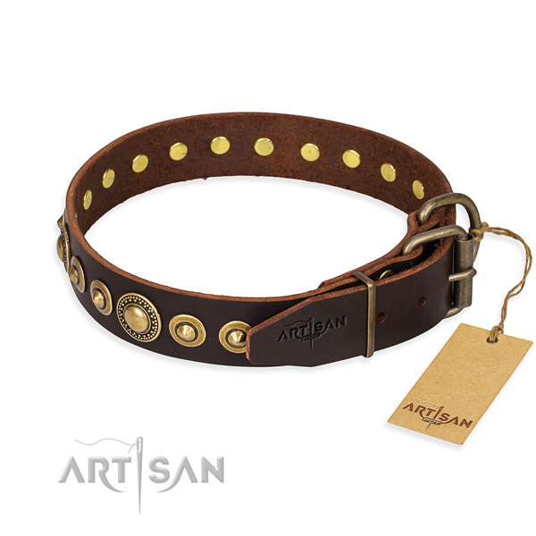 Fashionable leather collar for your gorgeous pet