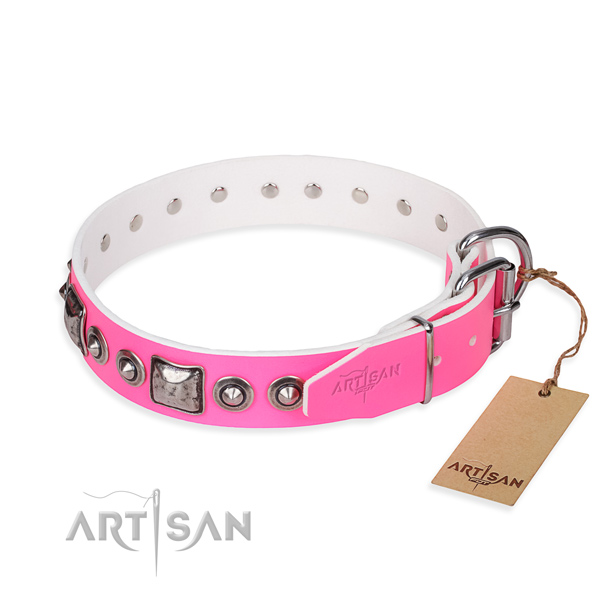 Durable leather collar for your stunning four-legged friend