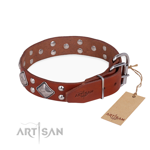 Awesome leather collar for your darling four-legged friend