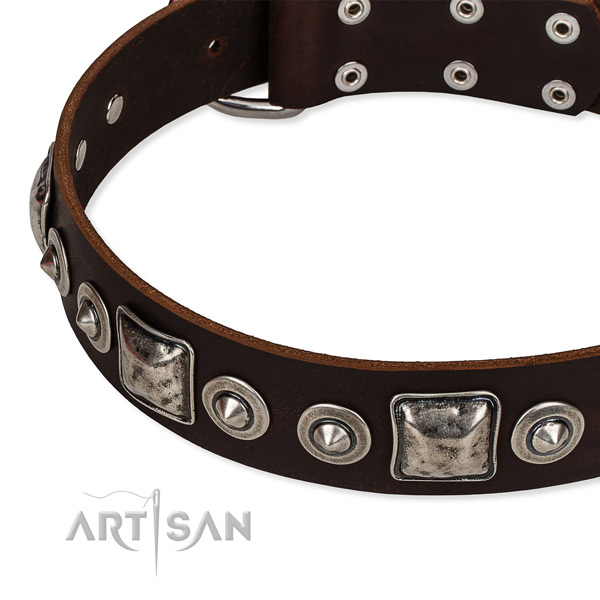 Easy to adjust leather dog collar with resistant to tear and wear non-rusting fittings