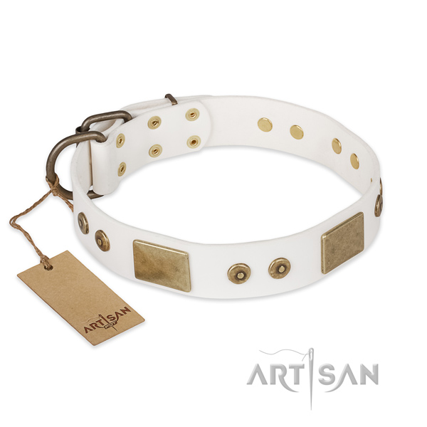 Stunning design embellishments on full grain natural leather dog collar