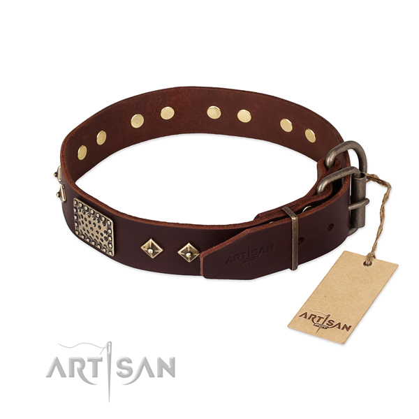 Everyday use full grain leather collar with embellishments for your four-legged friend