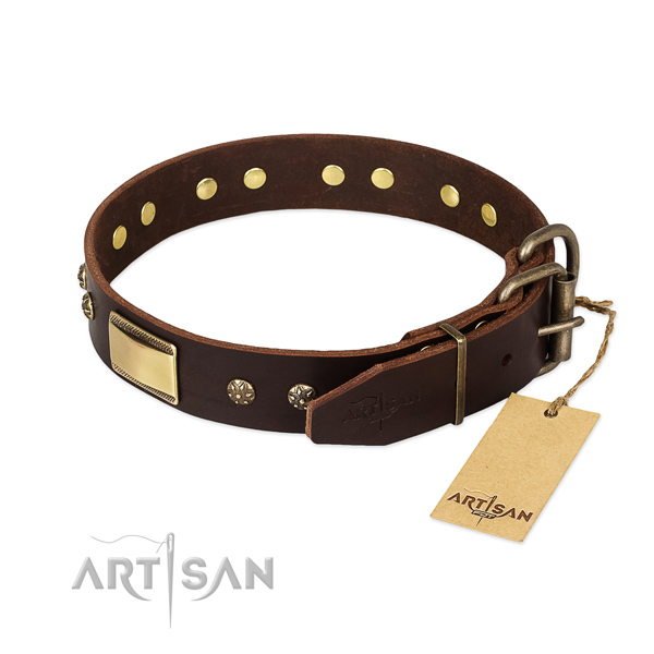 Walking genuine leather collar with decorations for your pet