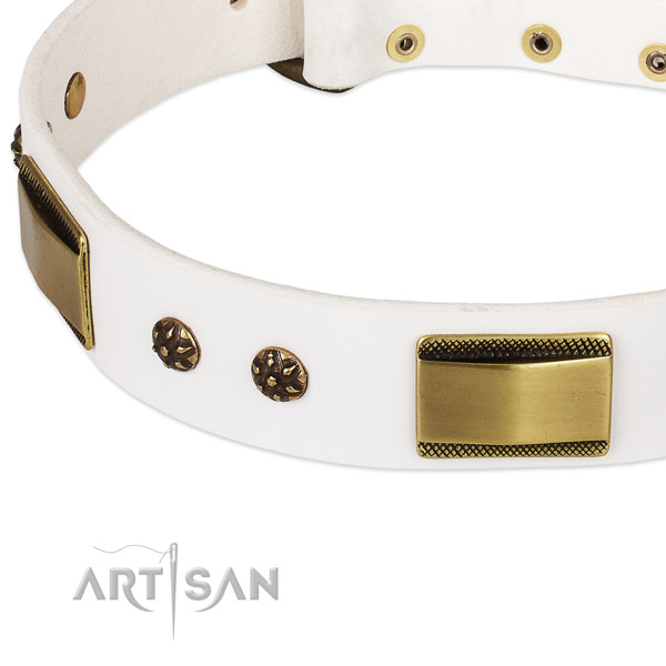 Walking genuine leather collar with corrosion proof buckle and D-ring