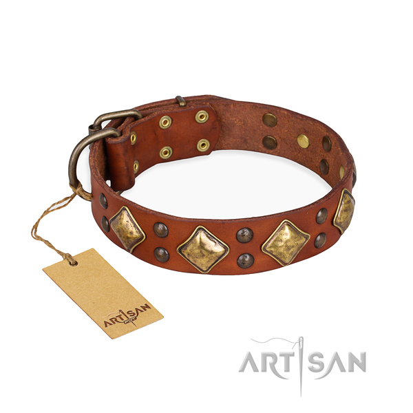 Exquisite design adornments on genuine leather dog collar