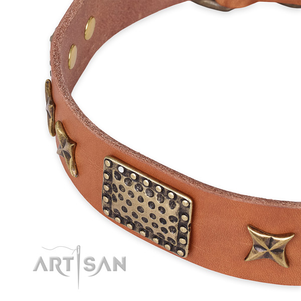 Quick to fasten leather dog collar with extra strong durable set of hardware