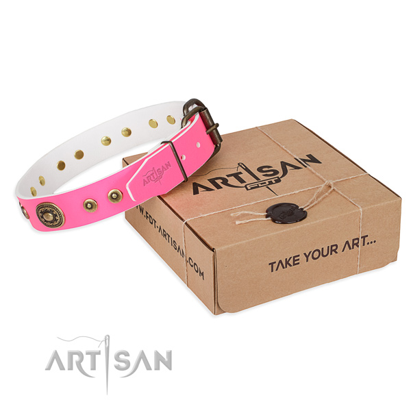 Designer leather dog collar for daily walking