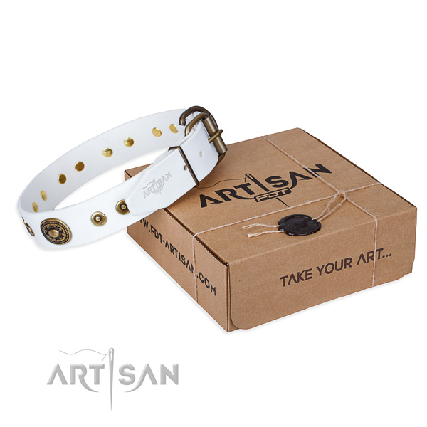 Top notch full grain natural leather dog collar for walking in style