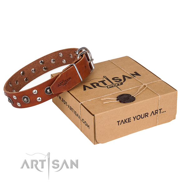 High quality full grain natural leather dog collar for stylish walks