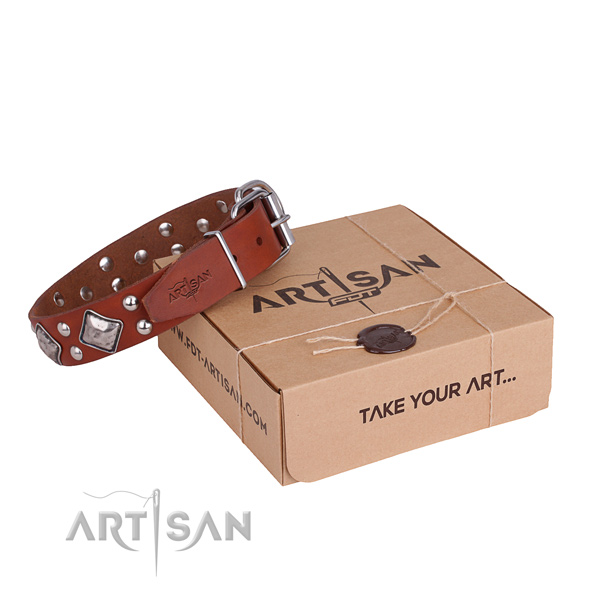 Top notch full grain leather dog collar for stylish walking