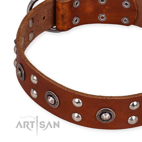 Easy to put on/off leather dog collar with resistant non-rusting set of hardware