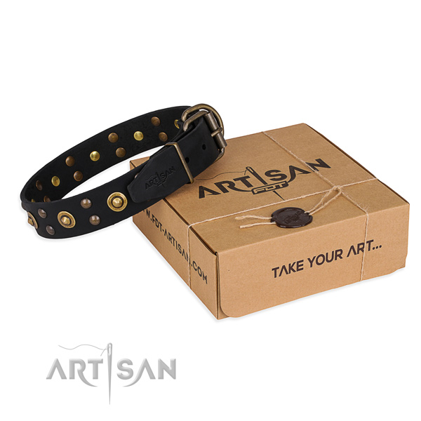 Finest quality leather dog collar for daily walking
