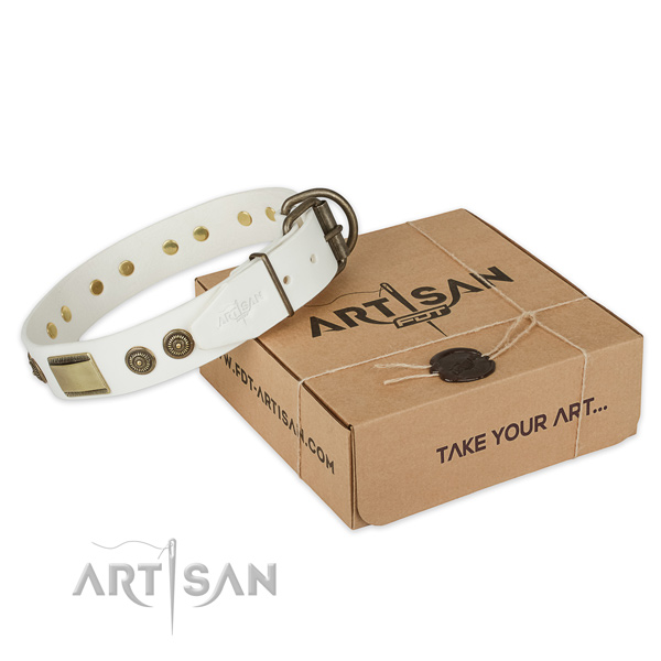 High quality genuine leather dog collar for everyday use