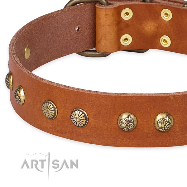 Quick to fasten leather dog collar with almost unbreakable non-rusting hardware