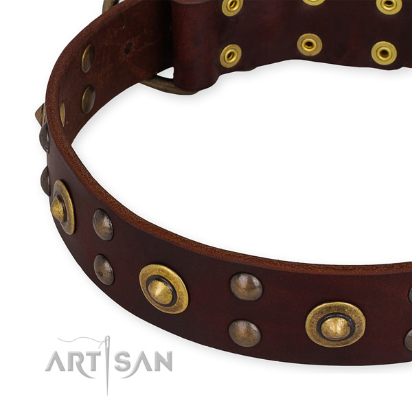 Snugly fitted leather dog collar with resistant non-rusting fittings