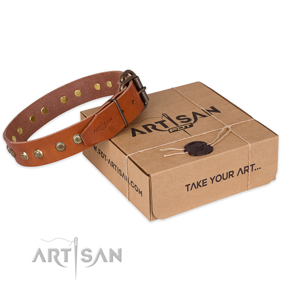 Top quality leather dog collar for walking in style