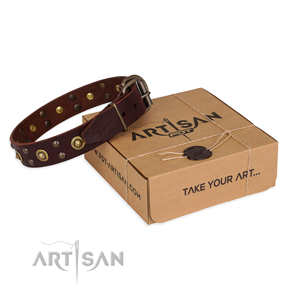 Perfect fit leather dog collar for everyday use