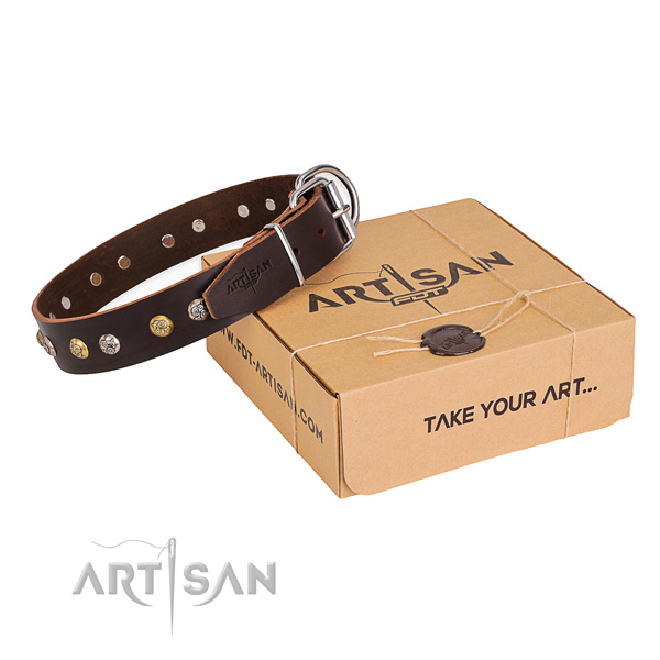 Designer full grain natural leather dog collar for daily use