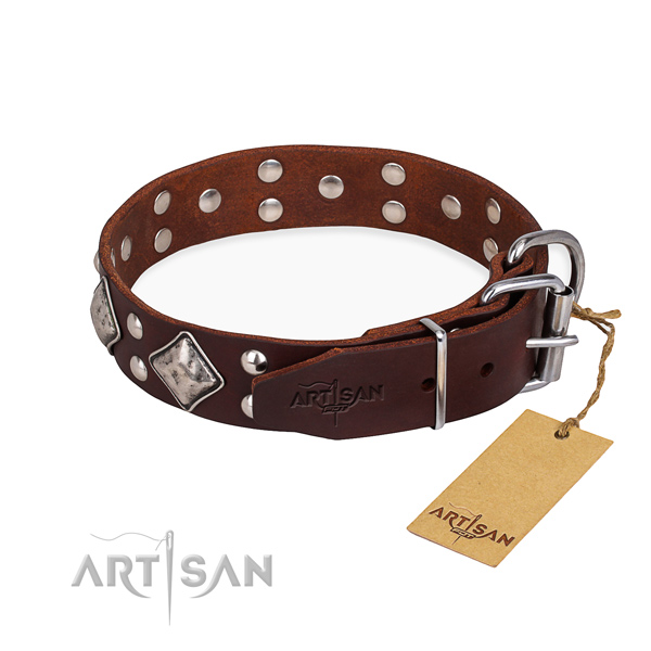 Tear-proof leather collar for your darling four-legged friend