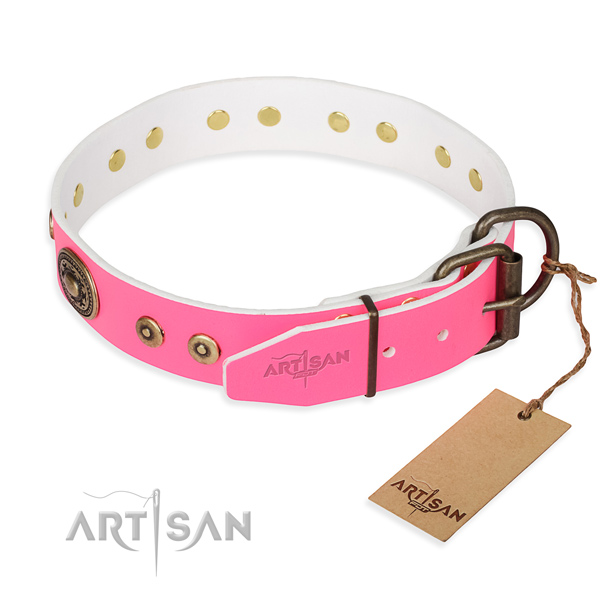 Fashionable leather collar for your gorgeous four-legged friend