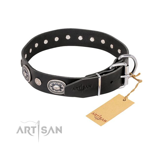 Daily leather collar for your stunning pet