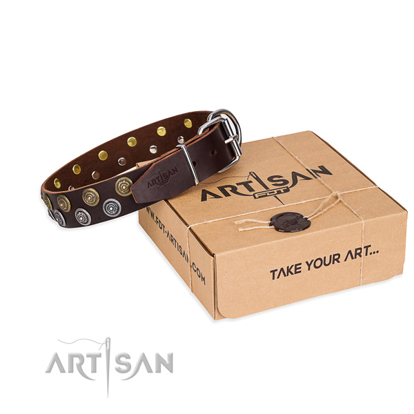 Everyday leather dog collar with cute adornments
