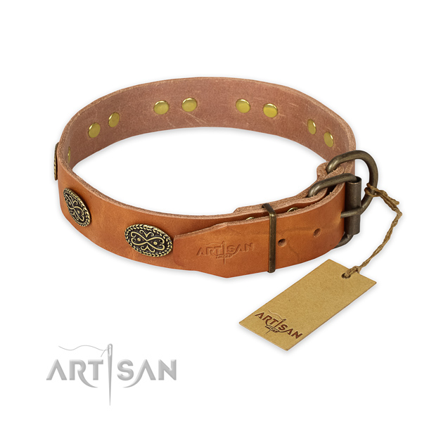 Everyday use full grain leather collar with adornments for your four-legged friend