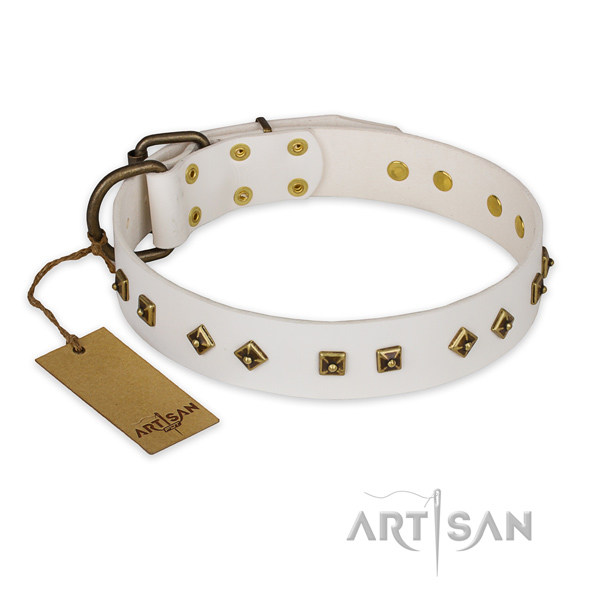 Impressive design adornments on leather dog collar