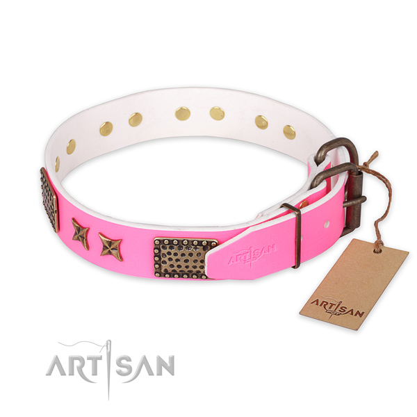 Daily walking leather collar with studs for your doggie