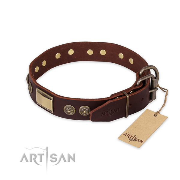 Stylish walking genuine leather collar with studs for  your four-legged friend