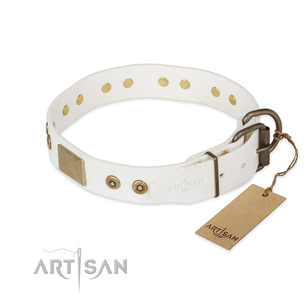 Everyday walking full grain genuine leather collar with studs for your pet