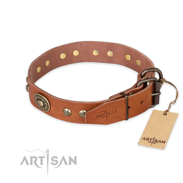 Everyday walking natural genuine leather collar with adornments for your canine