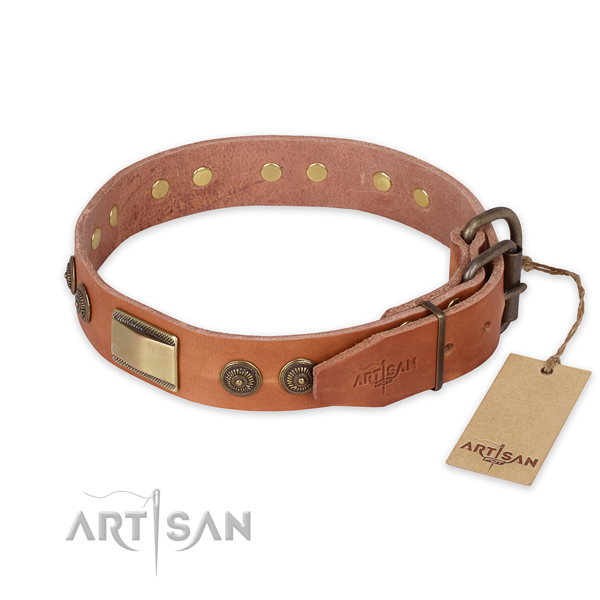 Walking leather collar with embellishments for your  four-legged friend